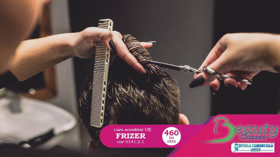 curs frizer